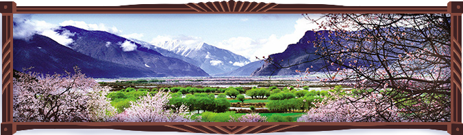 Photograph of spring in Nyingchi, Tibet, with green meadows, pink peach blossoms, blue mountains with shrouds of clouds and a shimmering lake in the distance.